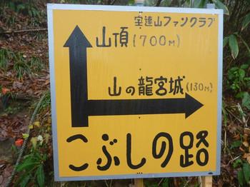 20141130_17s