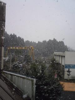 雪が降って来ました
