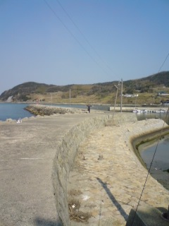 今淡路島にいます